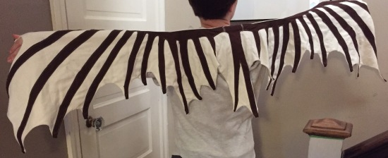 Wing shawl from Withencroft Industries!